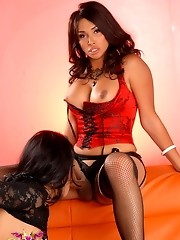 Unbelievably hot tgirls Vaniity & Foxxy having sex